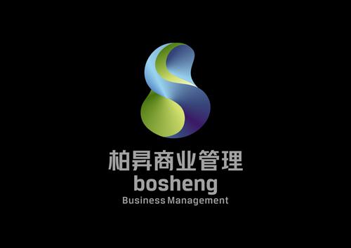 BOSHENG VISION2.jpg