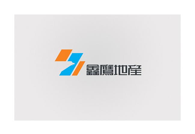 鑫鹰1.jpg