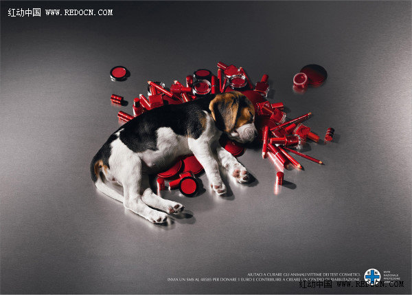 全球公益广告海报欣赏