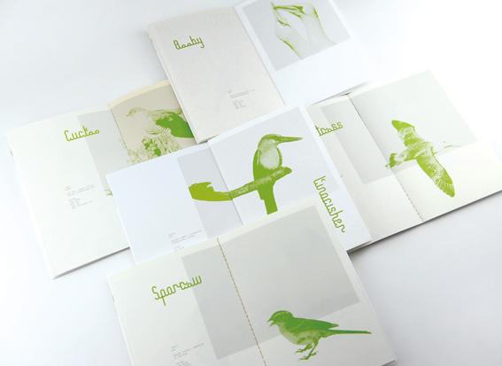留鸟计划7.jpg