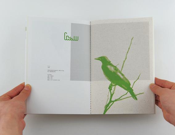 留鸟计划15.jpg