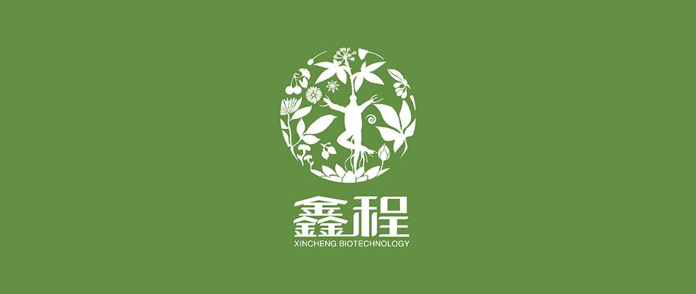 xincheng01.jpg