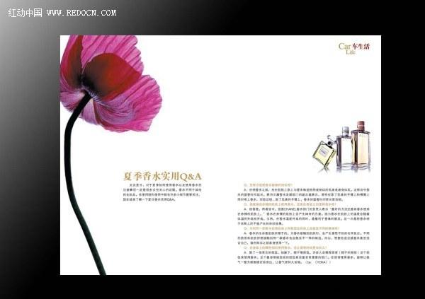 国外画册书籍版式设计欣赏图片