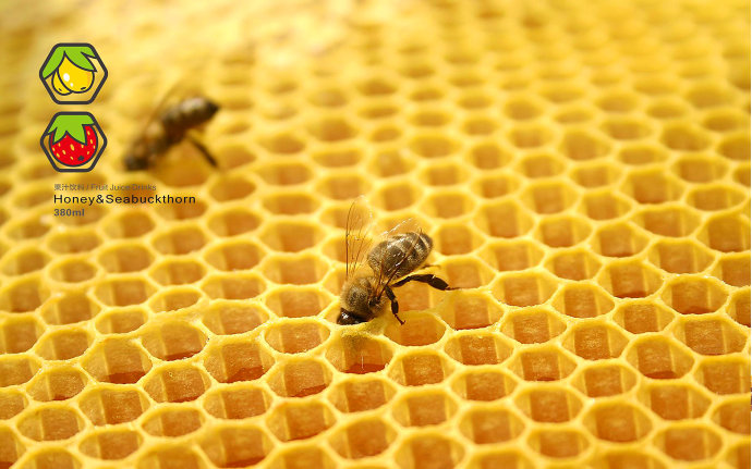 蜂蜜果汁饮品包装设计 1.jpg