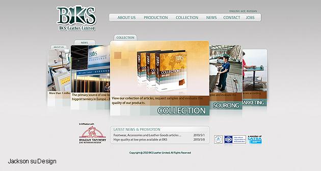65-网站设计.jpg