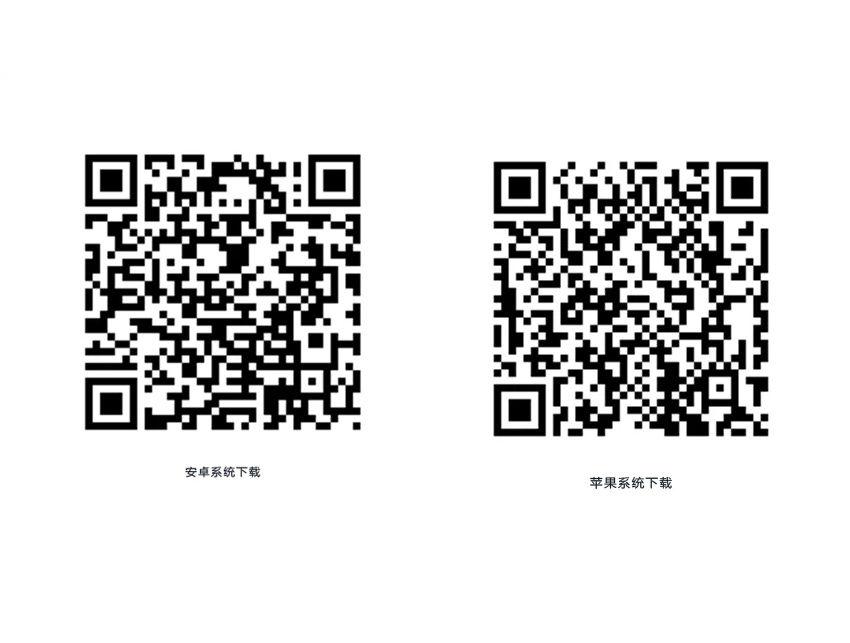 m_c83354844fc40000017ea094c37a.jpg