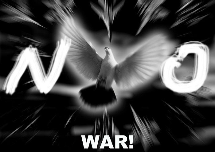 NO WAR.jpg