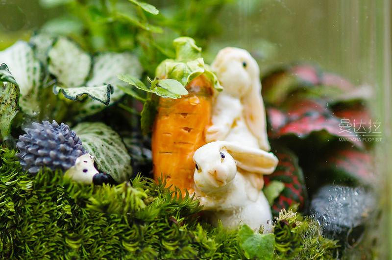 站酷-兔子萝卜款1.jpg
