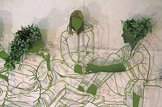 瓦赫宁根大学植物画