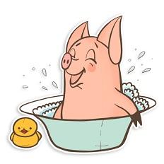 可爱的小猪表情系列
