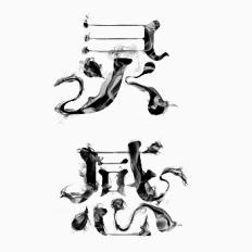 字体设计字形合集-张家佳