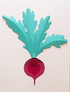甜菜根纸艺制作