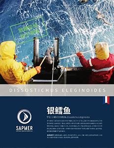 案例 | 法国【SAPMER】产品包装创意及宣传体系建设