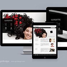 半人马设计案例:镜面电视品牌官网设计---品牌网站设计